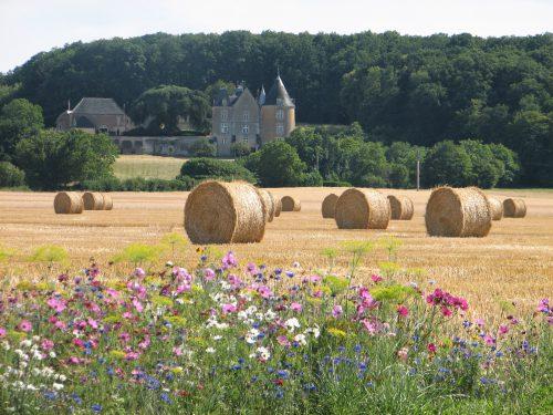 Le château de Bois Frelon, le paysage direct proposé par vos gîtes et chambres d'hôtes en Indre et Loire La ferme des pignons