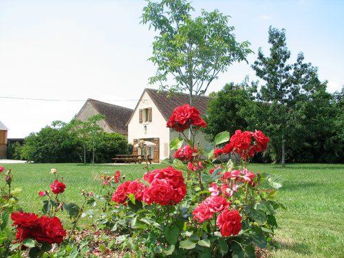 Découvrez la ferme des pignons, vos gîtes et chambres d'hôtes en Indre et Loire pour un séjour en pleine nature